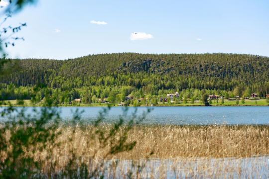 Naturist camp at Lyckebo at Tavelsjn lake close to Ume